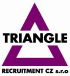 Logo Triangle Recruitment CZ s.r.o.